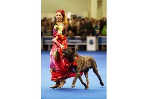 Чемпионат мира по танцам с собаками в Москве