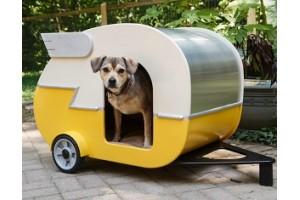 Какие будки для собак в тренде