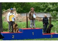 Фото соревнований